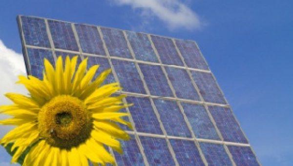 Flinterdunne zonnecel werkt net zo goed als gewone zonnepanelen