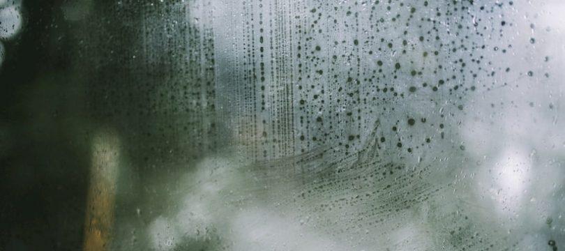 Interduct: Wat is de ideale luchtvochtigheid in huis?